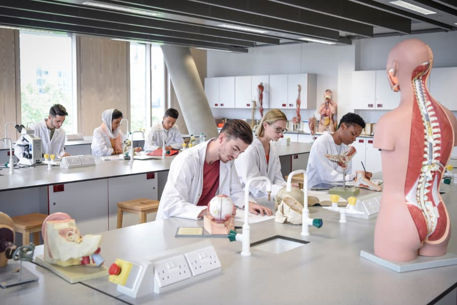 Students study in biology lab